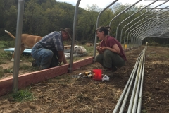 Brie & Norman attaching the base boards