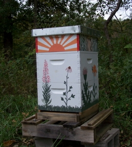 Honey Bees for fruit tree pollination & honey production