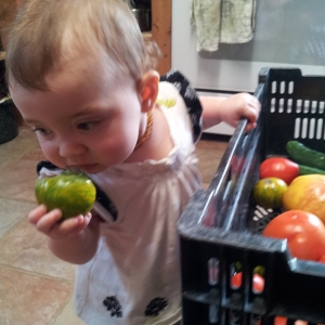Sylvia loves Green Zebra tomatoes